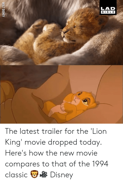 Dank, Disney, and The Lion King: WALT DISNEY The latest trailer for the 'Lion King' movie dropped today. Here's how the new movie compares to that of the 1994 classic 🦁🎥  Disney