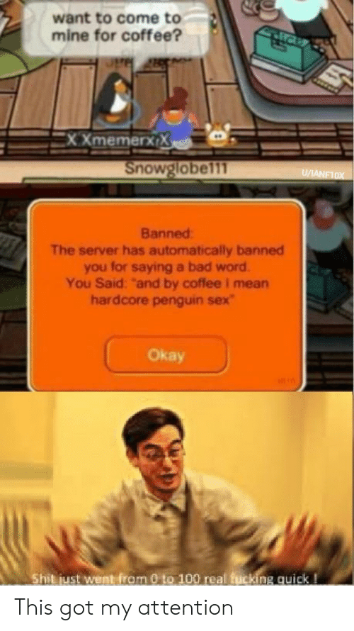 """0 to 100: want to come to  mine for coffee?  XXmemerx X  Snowglobel11  U/ANF10X  Banned  The server has automatically banned  you for saying a bad word  You Said: """"and by coffee I mean  hardcore penguin sex  Okay  Shit just went from 0 to 100 real fucking quick! This got my attention"""