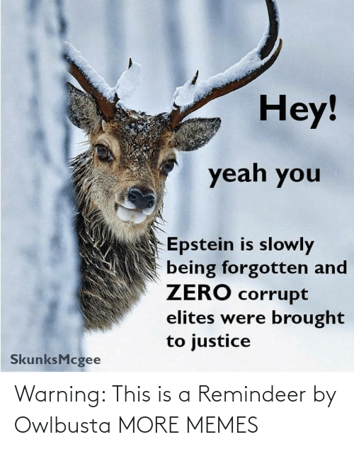 warning: Warning: This is a Remindeer by Owlbusta MORE MEMES