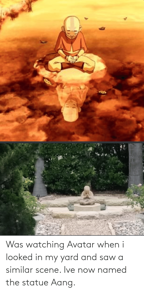 In My: Was watching Avatar when i looked in my yard and saw a similar scene. Ive now named the statue Aang.