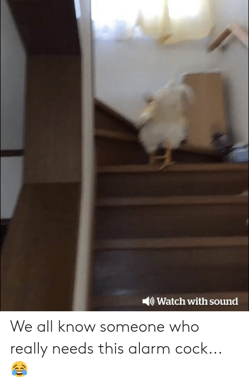 Alarm, Watch, and Who: )Watch with sound We all know someone who really needs this alarm cock...😂