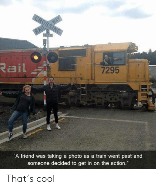 """Get In: WAY  CROSSING  RAIL  Rail  7295  """"A friend was taking a photo as a train went past and  someone decided to get in on the action."""" That's cool"""