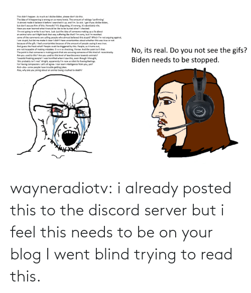 discord: wayneradiotv: i already posted this to the discord server but i feel this needs to be on your blog   I went blind trying to read this.