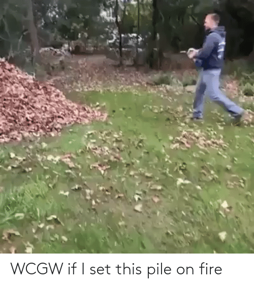 pile on: WCGW if I set this pile on fire