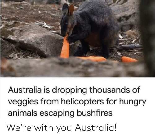 with you: We're with you Australia!