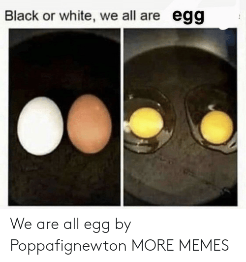 We Are All: We are all egg by Poppafignewton MORE MEMES