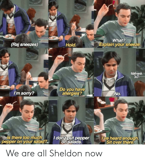We Are: We are all Sheldon now