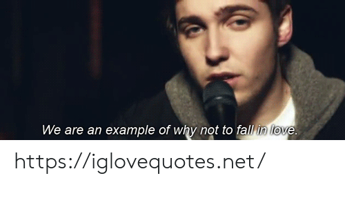 Fall, Love, and Net: We are an example of why not to fall in love. https://iglovequotes.net/