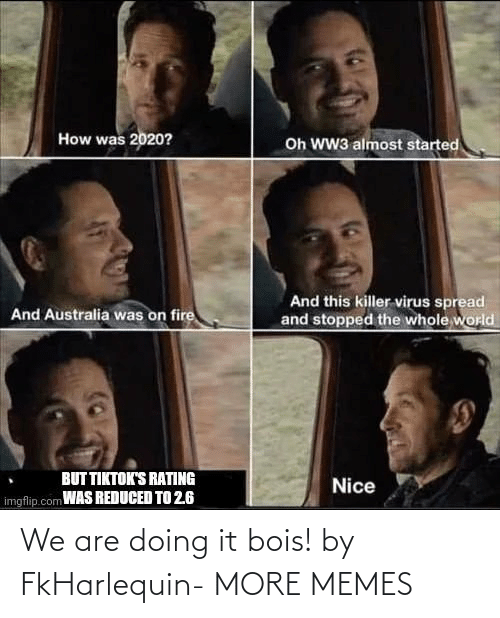 Doing It: We are doing it bois! by FkHarlequin- MORE MEMES