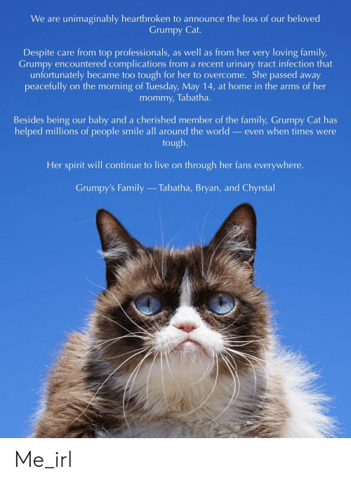 Family, Grumpy Cat, and Live: We are unimaginably heartbroken to announce the loss of our beloved  Grumpy Cat.  Despite care from top professionals, as well as from her very loving family,  Grumpy encountered complications from a recent urinary tract infection that  unfortunately became too tough for her to overcome. She passed away  mommy, Tabatha.  Besides being our baby and a cherished member of the family, Grumpy Cat has  helped millions of people smile all around the world _even when times were  tough.  Her spirit will continue to live on through her fans everywhere.  Grumpy's Family  Tabatha, Bryan, and Chyrstal Me_irl