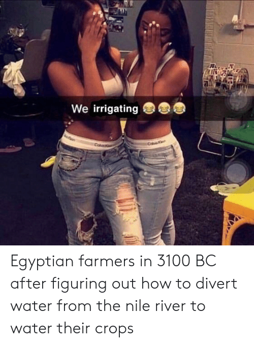 How To, Water, and Egyptian: We irrigating Egyptian farmers in 3100 BC after figuring out how to divert water from the nile river to water their crops