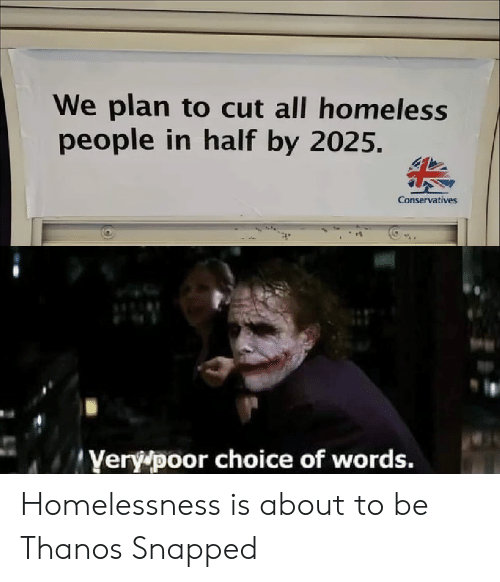 Homeless, Thanos, and Snapped: We plan to cut all homeless  people in half by 2025.  Conservatives  Yery poor choice of words. Homelessness is about to be Thanos Snapped