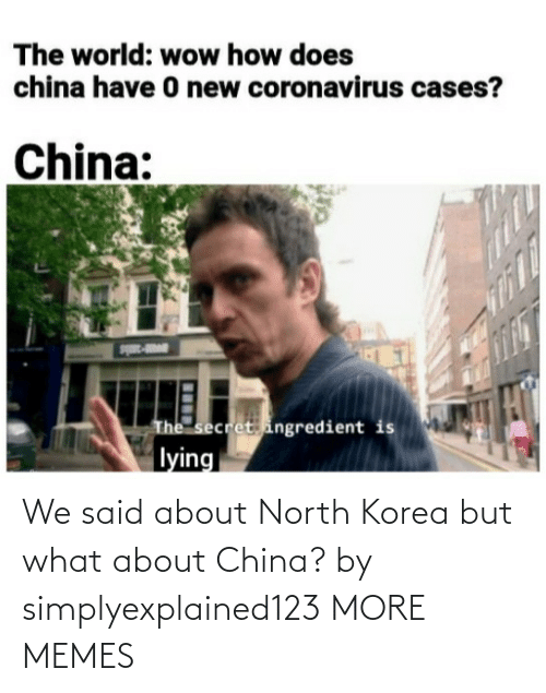 China: We said about North Korea but what about China? by simplyexplained123 MORE MEMES
