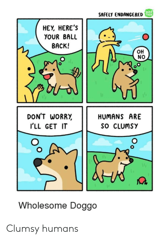 Wholesome: WEB  SAFELY ENDANCERED  HEY, HERE'S  YOUR BALL  BACK!  OH  NO  DON'T WORRY  HUMANS ARE  SO CLUMSY  ILL GET IT  Wholesome Doggo Clumsy humans