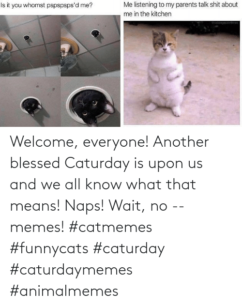 means: Welcome, everyone! Another blessed Caturday is upon us and we all know what that means! Naps! Wait, no -- memes! #catmemes #funnycats #caturday #caturdaymemes #animalmemes