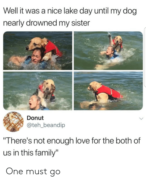 """Family, Love, and Nice: Well it was a nice lake day until my dog  nearly drowned my sister  Donut  @teh_beandip  """"There's not enough love for the both of  us in this family"""" One must go"""