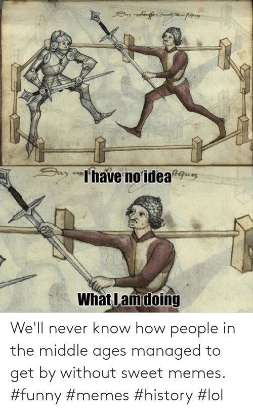 sweet: We'll never know how people in the middle ages managed to get by without sweet memes. #funny #memes #history #lol