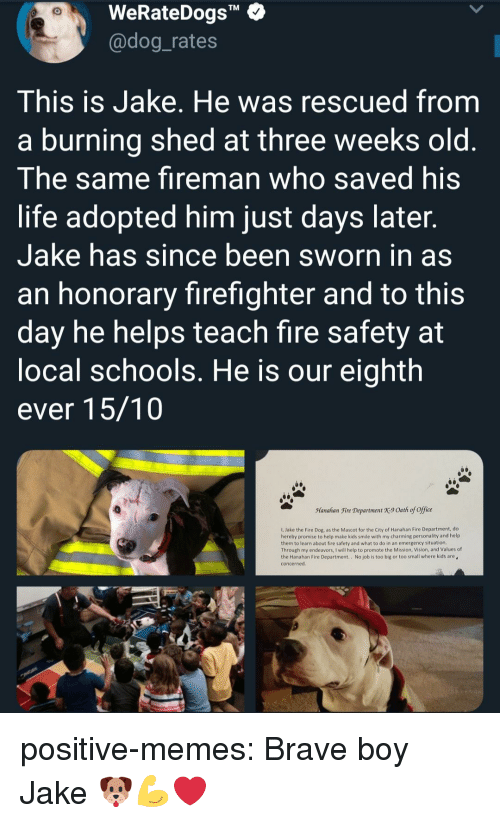 """Sworn: WeRateDogs""""  @dog_rates  TM  This is Jake. He was rescued from  a burning shed at three weeks old  The same fireman who saved his  life adopted him just days later  Jake has since been sworn in as  an honorary firefighter and to this  day he helps teach fire safety at  ocal schools. He is our eighth  ever 15/10  Manahan Fire Department X9 Oath of office  1, Jake the Fire Dog, as the Mascot for the City of Hanahan Fire Department, do  hereby promise to help make kids smile with my charming personality and help  them to learn about fire safety and what to do in an emergency situation  Through my endeavors, I will help to promote the Mission, Vision, and Values of  the Hanahan Fire Department.. No job is too big or too small where kids are  concerned positive-memes:  Brave boy Jake 🐶💪❤"""
