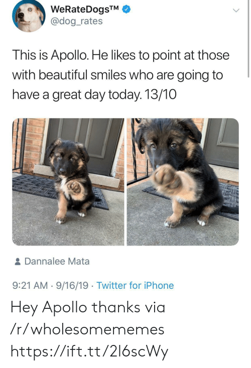Apollo: WeRateDogsTM  @dog_rates  This is Apollo. He likes to point at those  with beautiful smiles who are going to  have a great day today. 13/10  & Dannalee Mata  9:21 AM 9/16/19 Twitter for iPhone Hey Apollo thanks via /r/wholesomememes https://ift.tt/2l6scWy