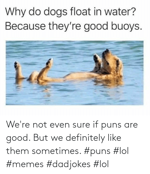 not even: We're not even sure if puns are good. But we definitely like them sometimes. #puns #lol #memes #dadjokes #lol