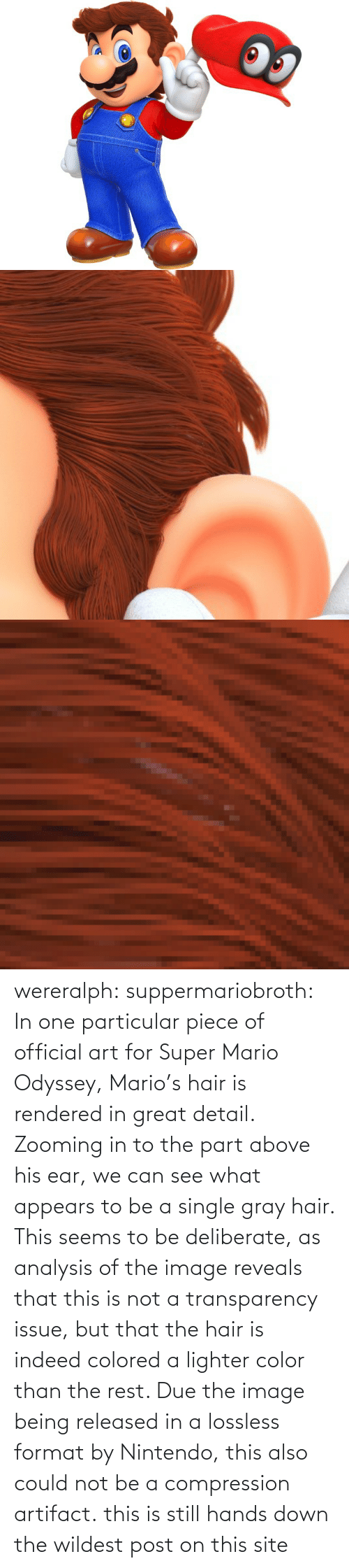 Hair: wereralph: suppermariobroth: In one particular piece of official art for Super Mario Odyssey, Mario's hair is rendered in great detail. Zooming in to the part above his ear, we can see what appears to be a single gray hair. This seems to be deliberate, as analysis of the image reveals that this is not a transparency issue, but that the hair is indeed colored a lighter color than the rest. Due the image being released in a lossless format by Nintendo, this also could not be a compression artifact. this is still hands down the wildest post on this site
