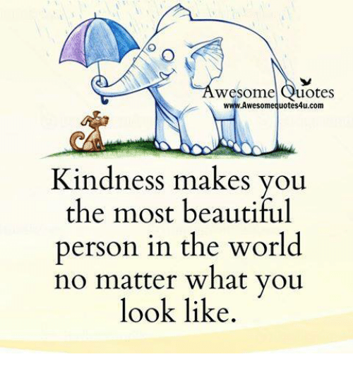 Awesomes: wesome  uotes  Awesome quotes4u.com  Kindness makes you  the most beautiful  person in the world  no matter what you  look like