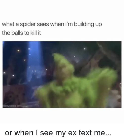 Kill It: what a spider sees when i'm building up  the balls to kill it or when I see my ex text me...