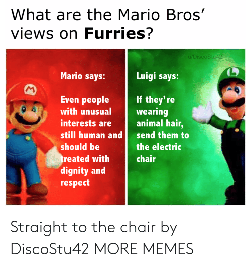 Dank, Memes, and Respect: What are the Mario Bros'  views on Furries?  u/DiscoStu42  Mario says:  Luigi says:  M  Even people  If they're  wearing  animal hair,  with unusual  interests are  still human and  send them to  should be  the electric  treated with  dignity and  respect  chair Straight to the chair by DiscoStu42 MORE MEMES