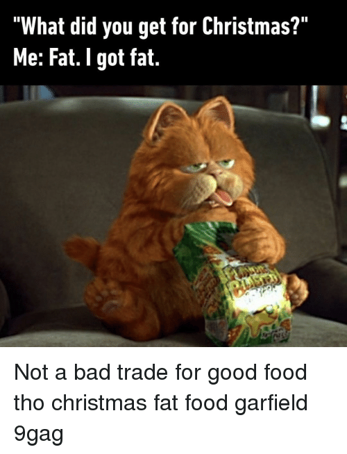 """9gag, Bad, and Christmas: """"What did you get for Christmas?""""  Me: Fat. I got fat. Not a bad trade for good food tho⠀ christmas fat food garfield 9gag"""