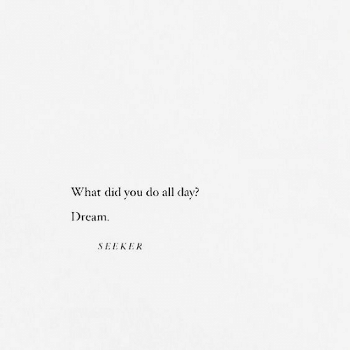 Dream, Day, and Did: What did youdoall day?  Dream  SEEKEAK