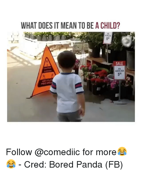 Bored Panda: WHAT DOES IT MEAN TO BE A CHILD?  AZALE  SALE  CAUTION  #2  AZALEA  59  WET FLO  PISO MOJ Follow @comediic for more😂😂 - Cred: Bored Panda (FB)