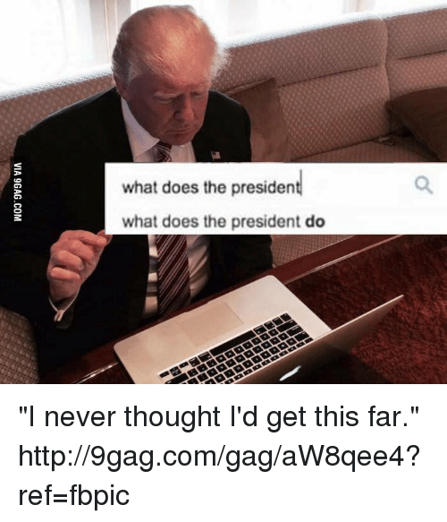 What Does The President Do