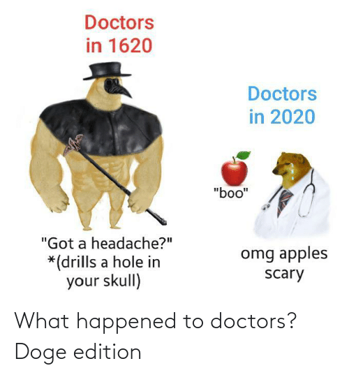 Doge: What happened to doctors? Doge edition