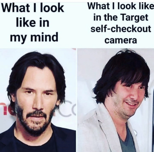Memes, Target, and Camera: What I look like-  in the Target  self-checkout  What I look  like in  my mind  camera