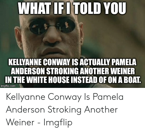 Conway, White House, and House: WHAT IFITOLD YOU  KELLYANNE CONWAY IS ACTUALLY PAMEA  ANDERSON STROKING ANOTHER WEINER  IN THE WHITE HOUSE INSTEAD OF ON A BOAT.  imgflip.com Kellyanne Conway Is Pamela Anderson Stroking Another Weiner - Imgflip