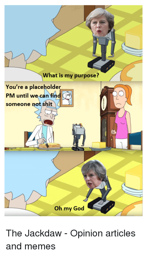Opinionated: What is my purpose?  You're a placeholder  PM until we can find  someone not shit  Oh my God The Jackdaw - Opinion articles and memes