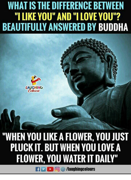 "Love, I Love You, and Buddha: WHAT IS THE DIFFERENCE BETWEEN  ""I LIKE YOU"" AND ""I LOVE YOU""?  BEAUTIFULLY ANSWERED BY BUDDHA  LAUGHING  ""WHEN YOU LIKE A FLOWER, YOU JUST  PLUCK IT. BUT WHEN YOU LOVEA  FLOWER, YOU WATER IT DAILY"""