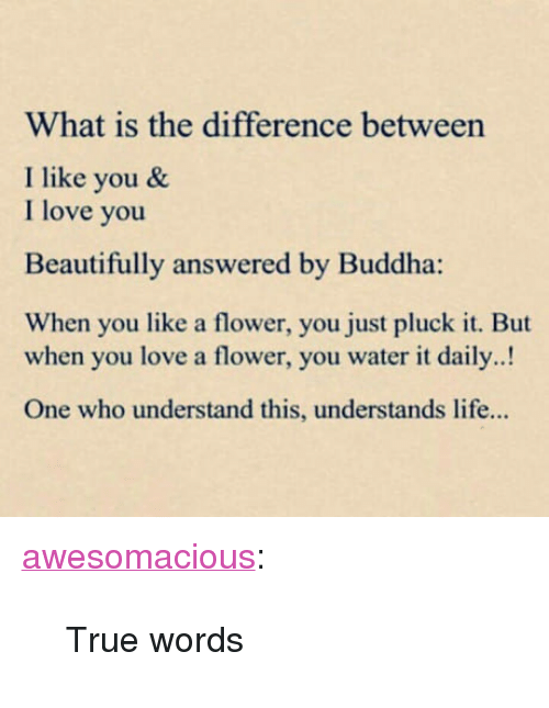 "Life, Love, and True: What is the difference between  I like you &  I love you  Beautifully answered by Buddha:  When you like a flower, you just pluck it. But  when you love a flower, you water it daily..!  One who understand this, understands life... <p><a href=""http://awesomacious.tumblr.com/post/170585624243/true-words"" class=""tumblr_blog"">awesomacious</a>:</p>  <blockquote><p>True words</p></blockquote>"