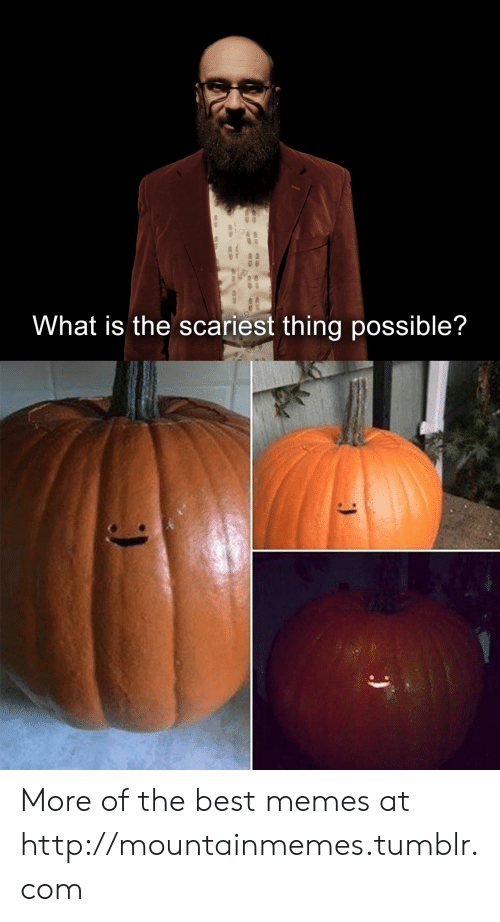 The Best Memes: What is the scariest thing possible? More of the best memes at http://mountainmemes.tumblr.com
