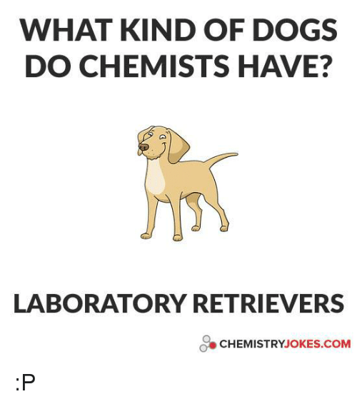 Chemistry Joke: WHAT KIND OF DOGS  DO CHEMISTS HAVE?  LABORATORY RETRIEVERS  CHEMISTRY JOKES COM :P