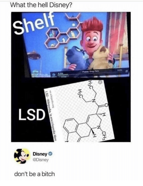 Bitch, Disney, and Wikipedia: What the hell Disney?  Shelf  Puppy g Pa  LSD  Disney  @Disney  don't be a bitch  CH3  H&C  H  Нас  ewkipeda.cr  LSD-Wikipedia, la enciclopedia libre