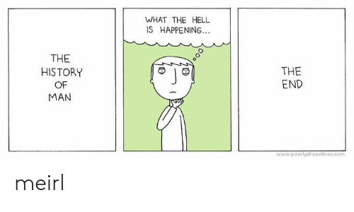 History, Hell, and MeIRL: WHAT THE HELL  IS HAPPENING...  THE  THE  HISTORY  END  OF  MAN  www.poorlydrawnlines.com meirl