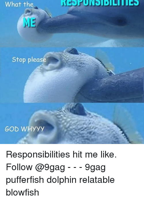 whyyy: What the  Stop pleas  GOD WHyyy Responsibilities hit me like. Follow @9gag - - - 9gag pufferfish dolphin relatable blowfish