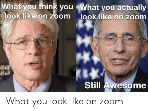 Zoom: What you look like on zoom