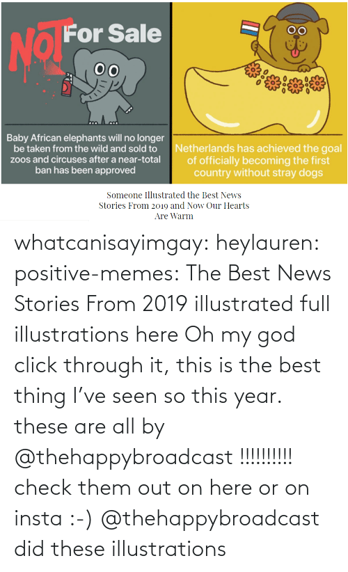 add: whatcanisayimgay:  heylauren: positive-memes:    The Best News Stories From 2019 illustrated full illustrations here  Oh my god click through it, this is the best thing I've seen so this year.  these are all by @thehappybroadcast !!!!!!!!!! check them out on here or on insta :-)    @thehappybroadcast did these illustrations