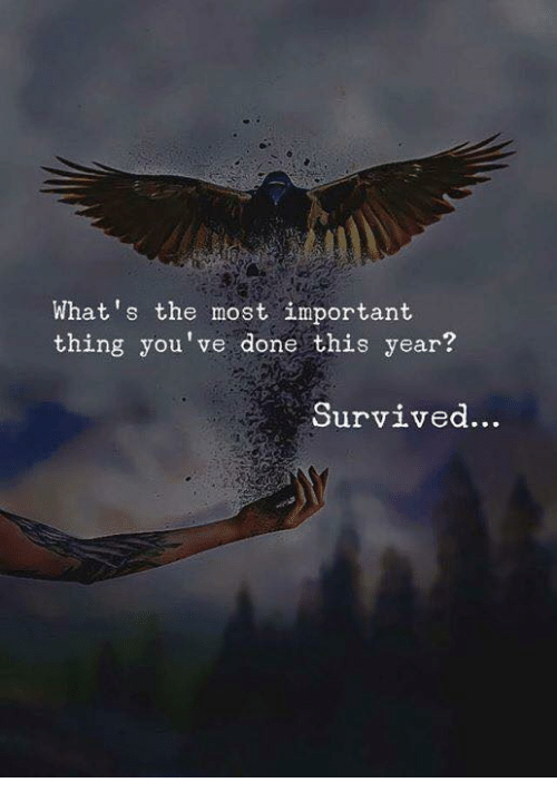 Thing, Whats, and This: What's the most important  thing you've done this year?  Survived.