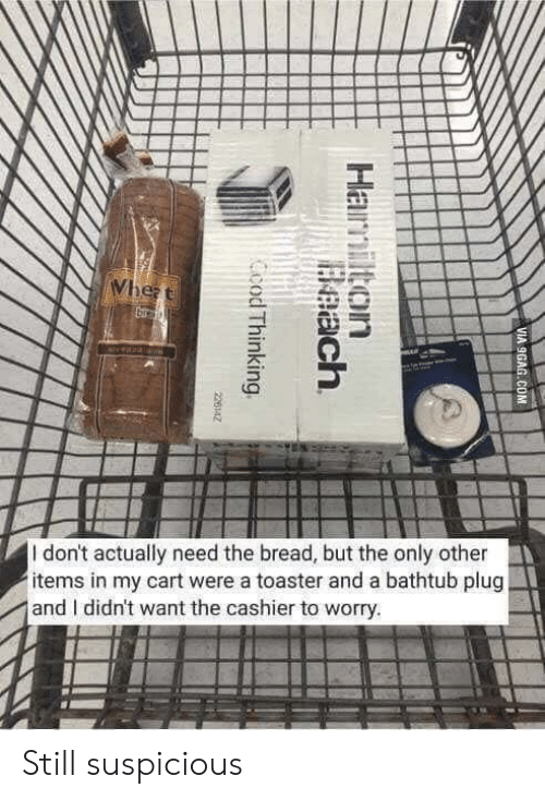 plug: Wheat  veala  I don't actually need the bread, but the only other  items in my cart were a toaster and a bathtub plug  and I didn't want the cashier to worry.  VIA 9GAG.COM  Hamilton  Beach  Ccod Thinking  226142 Still suspicious