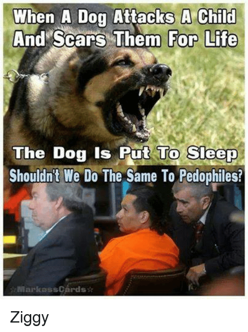 Pedophillic: When A Dog Attacks A Child  Scars Them For Life  And The Dog is Put To Sleep  Shouldn't We Do The Same To Pedophiles?  AMarkass Cards Ziggy