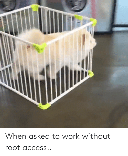 Without: When asked to work without root access..