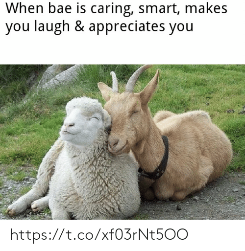 caring: When bae is caring, smart, makes  you laugh & appreciates you https://t.co/xf03rNt5OO
